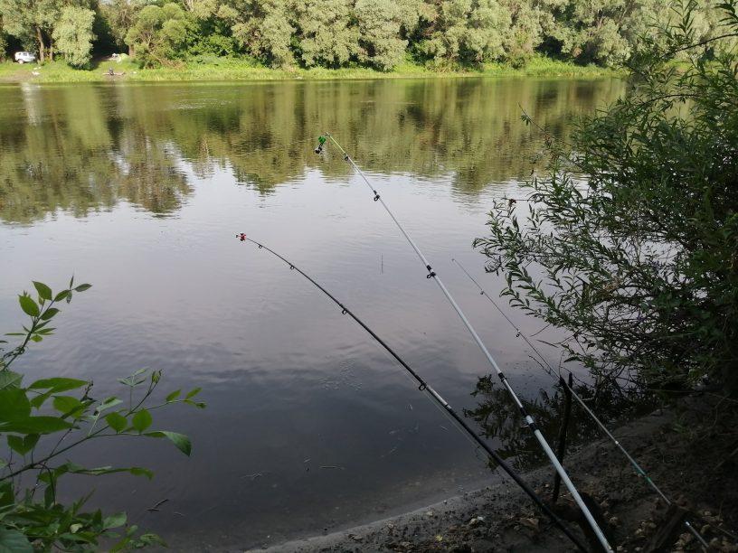 Рыбалка на МТС ТВ