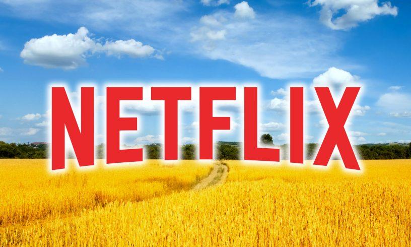 Netflix стал украинским